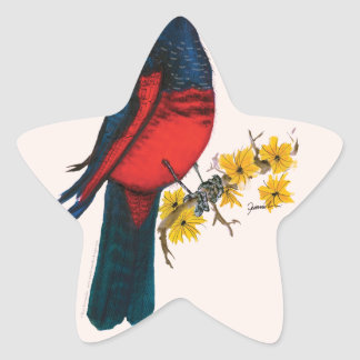 pesquets parrot, tony fernandes star sticker