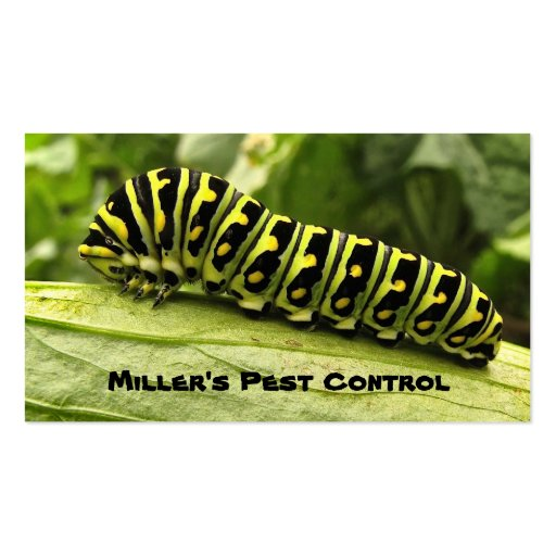 Pest Control Double-Sided Standard Business Cards (Pack Of 100)