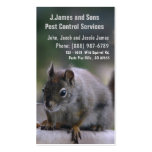 Pest Control Vermin Exterminator Business Card