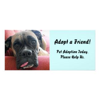 Pet Adoption Rack Card