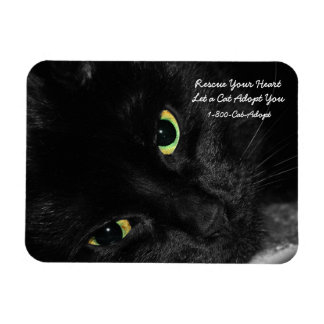 Pet Adoption Rescue Your Heart Adopt a Black Cat Magnet