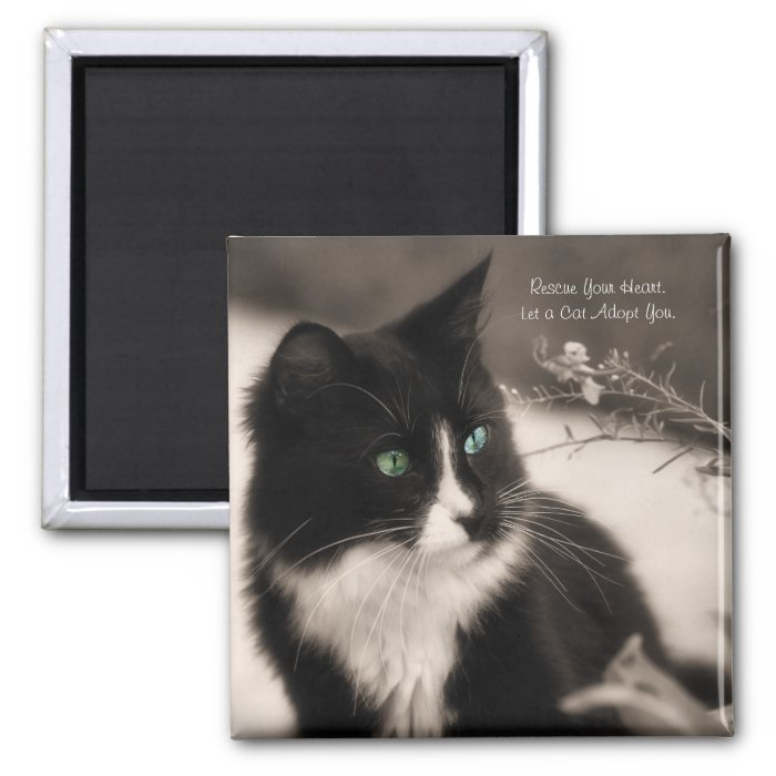 Pet Adoption Rescue Your Heart And Adopt A Cat 2 Inch Square Magnet