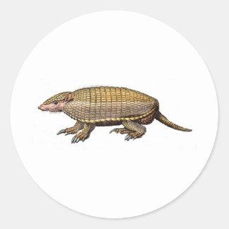 Pet Armadillo Round Sticker