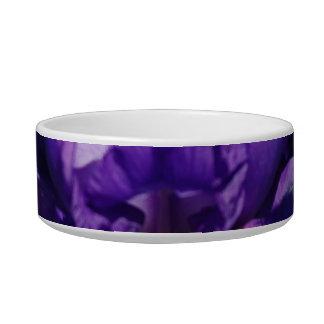 Pet Bowl Cat Water Bowl
