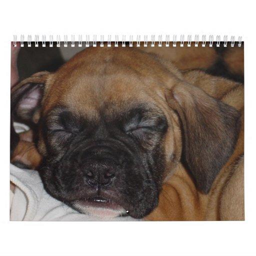 Pet Calendar