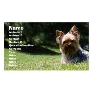 Pet care business card