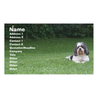 Pet care/pet sitting/yard care business card