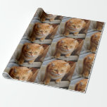 """Pet Cat Dog Photo Personalize Custom Wrapping Paper<br><div class=""""desc"""">This design was created through digital art. It may be personalized by clicking the customize button and changing the color, adding a name, initials or your favorite words. Contact me at colorflowcreations@gmail.com if you with to have this design on another product. Purchase my original abstract acrylic painting for sale at...</div>"""