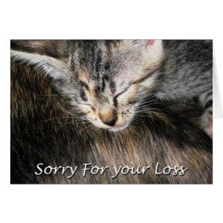 Pet Cat Sympathy Card, Loss Of Cat Card