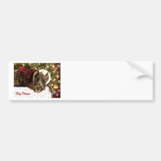Pet Christmas Card Bumper Sticker