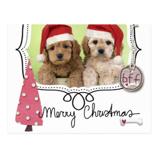 Pet Christmas Photo Card Postcard