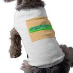 armando aguiar (Rato)  2013 smart street  Pet Clothing