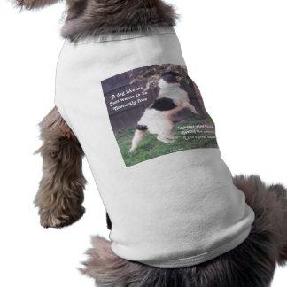 Pet Clothing Dog Horse Poem By Ladee Basset