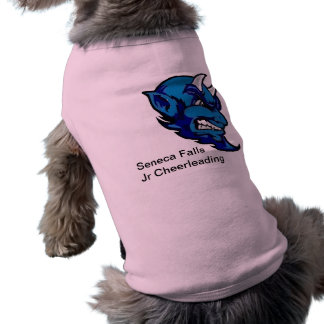 Pet Clothing for Cheerleading