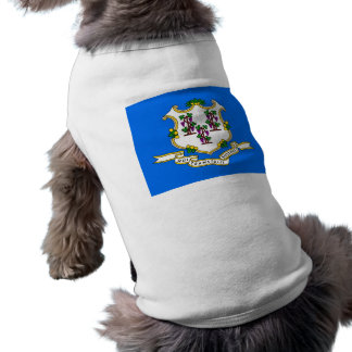 Pet Clothing with Flag of Connecticut, USA