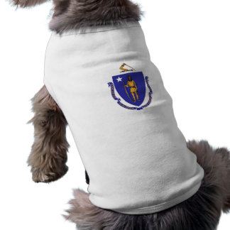 Pet Clothing with Flag of Massachusetts, USA