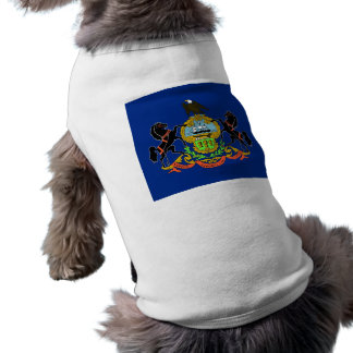 Pet Clothing with Flag of Pennsylvania, USA