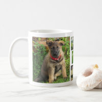 Pet Collage Photo Mug (Grass)
