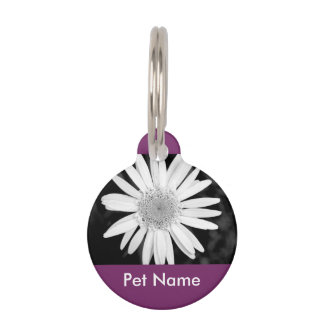 Pet Collection - Round Pet Name Tag