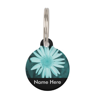 Pet Collection - Round Pet Name Tag - Teal