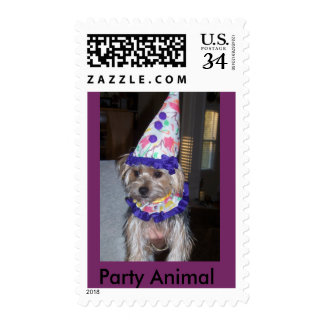 pet,costumes postage