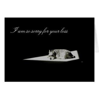 Pet Death, Sympathy Greeting Card