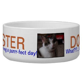 PET DISH.501.MASTER DOG AND CAT BOWL