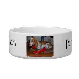 pet, dog, bowl, lunch bowl