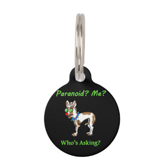Pet Dog Chihuahua Paranoid Pet Name Tag
