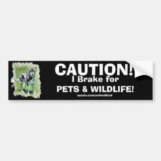 Pet Dog Road Safety Bumper Sticker