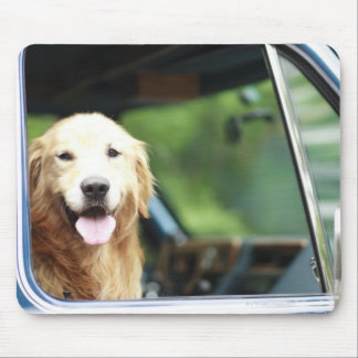 Pet dog sitting in a car mouse pad