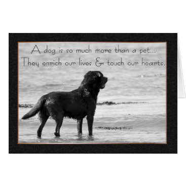 Valentines Themed Pet Dog Sympathy Card - Touch Our Hearts