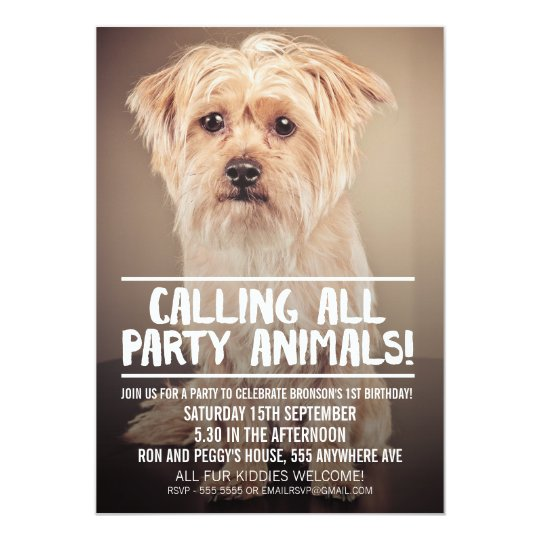 PET DOGS PARTY PHOTO INVITE
