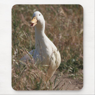Pet Duck Bird Pekin Animal Mousepad