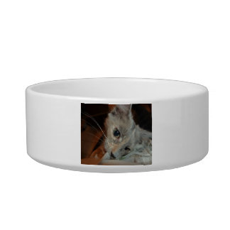 Pet Food Bowl with Photo