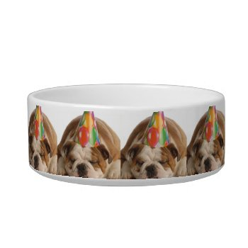 Pet Food Dish Bulldog Custome by creativeconceptss at Zazzle