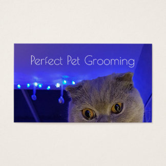 Pet Grooming Business Card