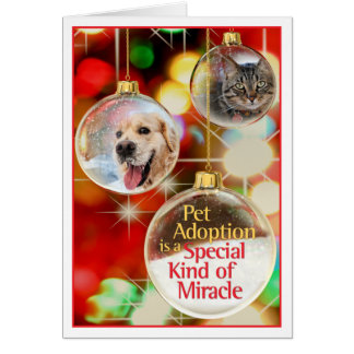 Pet Holiday Card with Ornaments