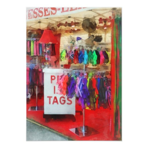 Pet Leashes and Harnesses For Sale Card