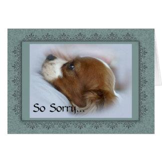 Pet Loss Memorial Card