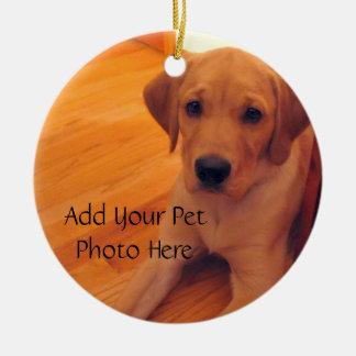 Pet Lover Animal Photo Ornament