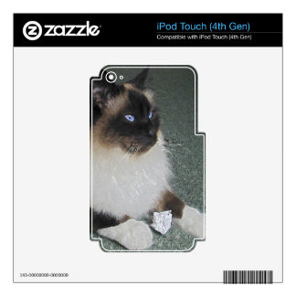 Pet-lovers Birman Cat Designs on iPod Touch Skin