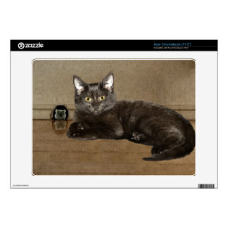 Pet-lovers Black Cat and Mouse for Cat-fanciers Acer Chromebook Decal