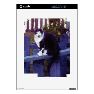 Pet-lovers Cute Cat Designs on Electronics Skin iPad 2 Decal