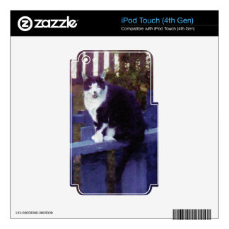 Pet-lovers Cute Cat Designs on Electronics Skin Skin For iPod Touch 4G