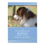 Pet Memorial 5x7 Light Blue Rainbow Bridge (MALE) Card