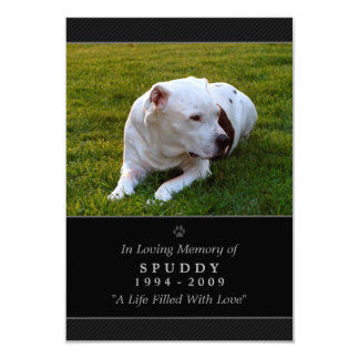 "Pet Memorial Card 3.5""x5"" Black Modern Photo"