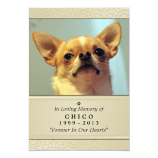 "Pet Memorial Card 3.5"" x 5"" - Creme Modern Photo"