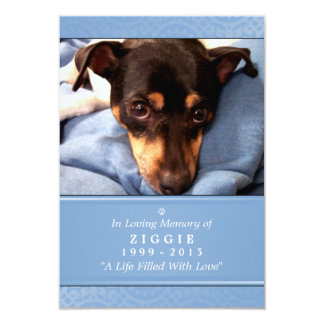 Pet Memorial Card 3.5 x 5 Light Blue Pet's Prayer