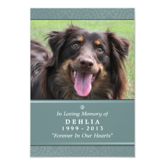Pet Memorial Card 3.5x5 Teal Prayer for Pets